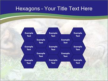0000077075 PowerPoint Templates - Slide 44