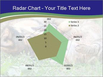 0000077075 PowerPoint Templates - Slide 51