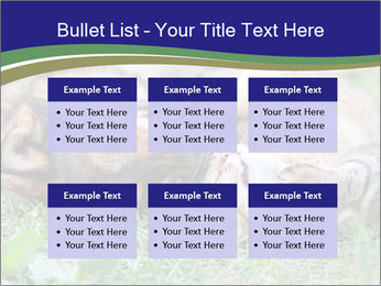 0000077075 PowerPoint Templates - Slide 56