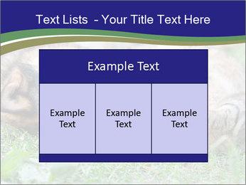 0000077075 PowerPoint Template - Slide 59
