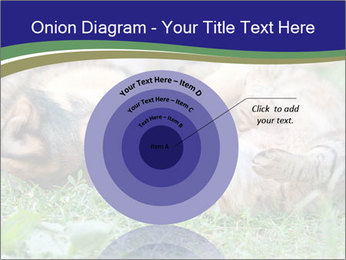 0000077075 PowerPoint Templates - Slide 61
