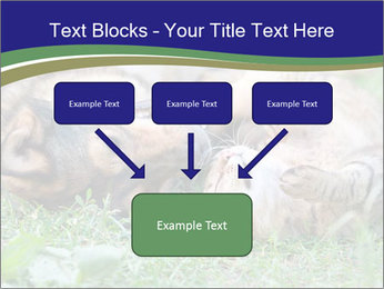 0000077075 PowerPoint Template - Slide 70