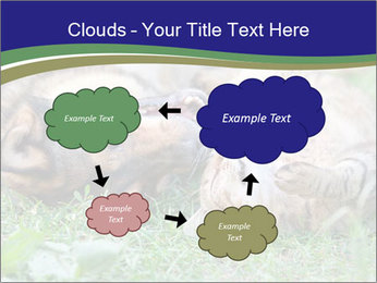 0000077075 PowerPoint Template - Slide 72