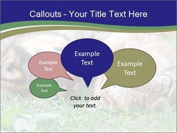 0000077075 PowerPoint Templates - Slide 73