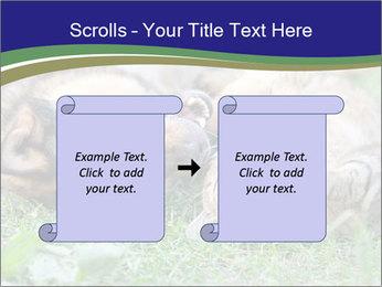 0000077075 PowerPoint Template - Slide 74