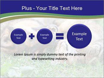 0000077075 PowerPoint Template - Slide 75