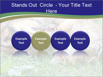 0000077075 PowerPoint Template - Slide 76