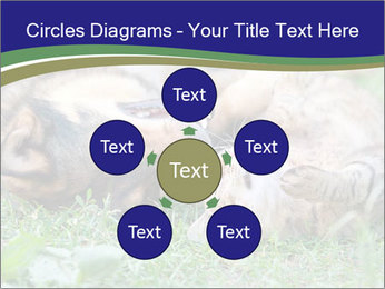 0000077075 PowerPoint Templates - Slide 78