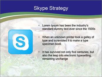 0000077075 PowerPoint Templates - Slide 8