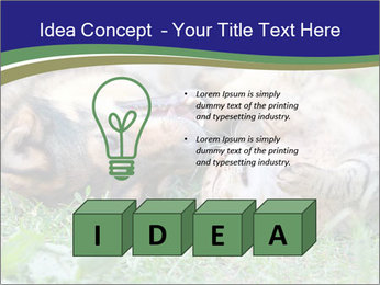 0000077075 PowerPoint Templates - Slide 80
