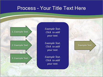 0000077075 PowerPoint Template - Slide 85