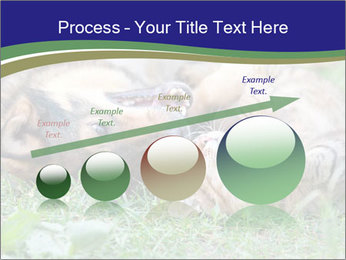 0000077075 PowerPoint Templates - Slide 87