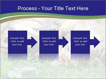 0000077075 PowerPoint Template - Slide 88