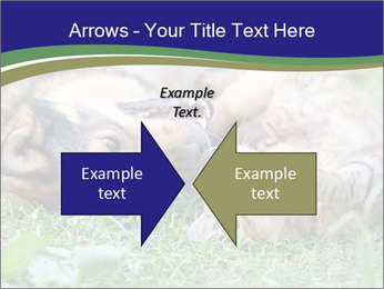 0000077075 PowerPoint Template - Slide 90