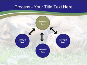 0000077075 PowerPoint Template - Slide 91