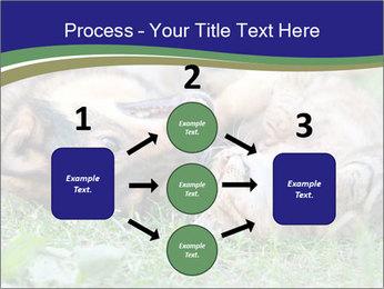 0000077075 PowerPoint Templates - Slide 92
