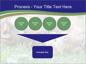 0000077075 PowerPoint Templates - Slide 93