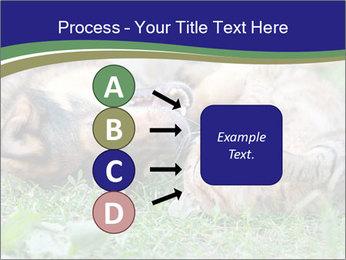 0000077075 PowerPoint Template - Slide 94