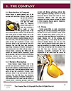 0000077076 Word Template - Page 3