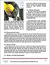 0000077076 Word Template - Page 4