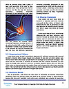 0000077078 Word Template - Page 4