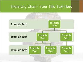 0000077079 PowerPoint Template - Slide 67