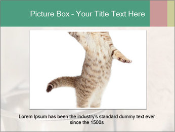 0000077089 PowerPoint Template - Slide 16