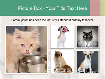 0000077089 PowerPoint Templates - Slide 19