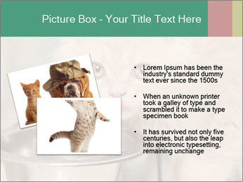 0000077089 PowerPoint Templates - Slide 20