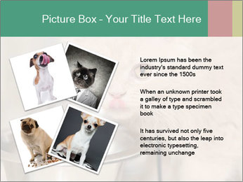 0000077089 PowerPoint Templates - Slide 23