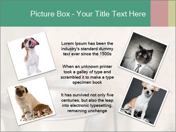 0000077089 PowerPoint Template - Slide 24