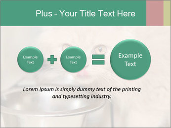0000077089 PowerPoint Template - Slide 75