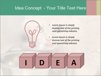 0000077089 PowerPoint Template - Slide 80