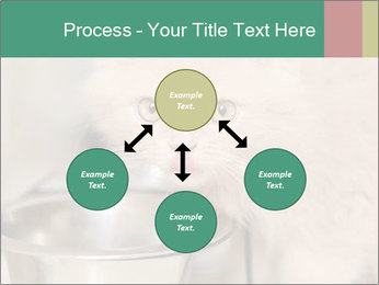 0000077089 PowerPoint Template - Slide 91