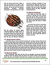 0000077091 Word Templates - Page 4