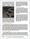0000077102 Word Templates - Page 4