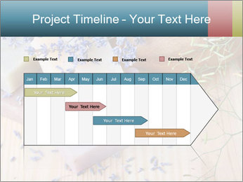 0000077105 PowerPoint Templates - Slide 25