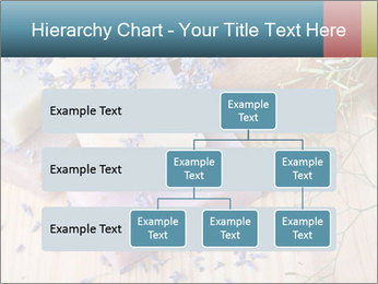 0000077105 PowerPoint Template - Slide 67
