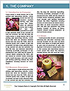 0000077105 Word Templates - Page 3