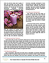 0000077105 Word Templates - Page 4