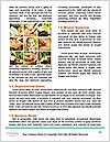 0000077117 Word Template - Page 4
