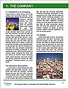 0000077123 Word Template - Page 3
