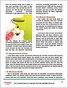 0000077125 Word Templates - Page 4