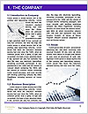 0000077127 Word Template - Page 3