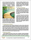 0000077145 Word Templates - Page 4