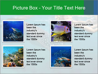 0000077158 PowerPoint Template - Slide 14