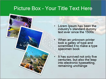 0000077158 PowerPoint Template - Slide 17