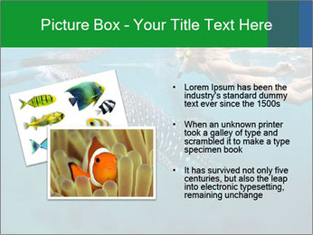 0000077158 PowerPoint Templates - Slide 20