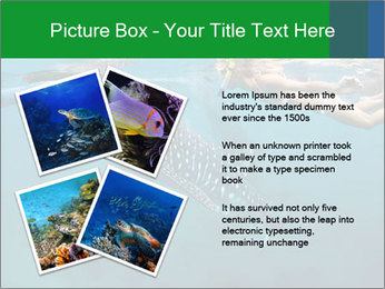 0000077158 PowerPoint Template - Slide 23