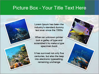 0000077158 PowerPoint Template - Slide 24
